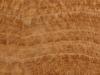 wood-veins